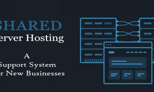 Shared Server Hosting Services- A Support System For New Businesses