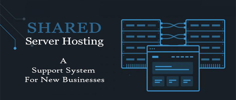 Shared Server Hosting Services A Support System For New Businesses