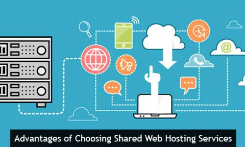 Advantages of Choosing Shared Web Hosting Services